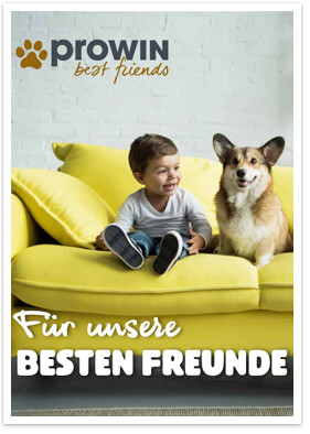 proWIN Produktkatalog best friends - 2019